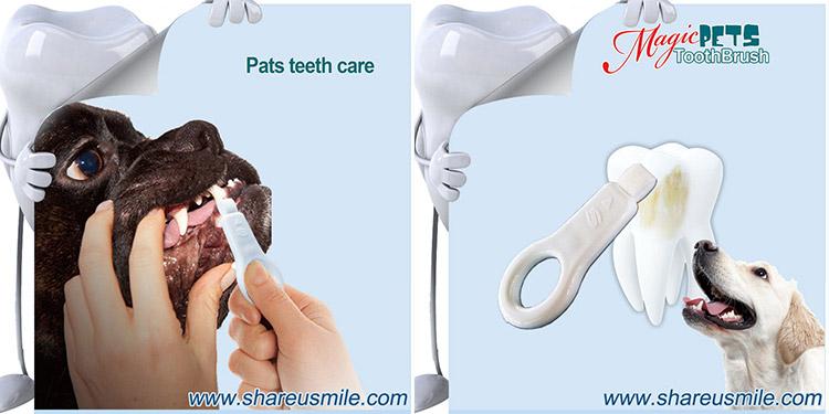 shareusmile-SH-PET01-Pet-tooth-brush--a-professional-cleaning-Dog's-Teet_