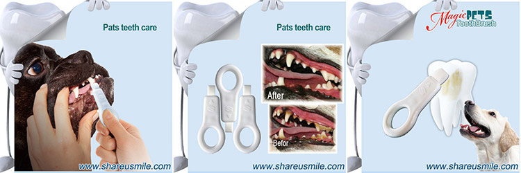 -Pet-tooth-clean-kit--a-professional-cleaning-Dog's-Teet_