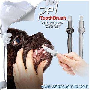 shareusmile pet toothbrush is new dog teeth cleaning kit