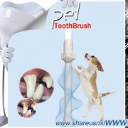 an-effective-and-easy-use-dog-toothbrush-product-worked-great-from-shareusmile