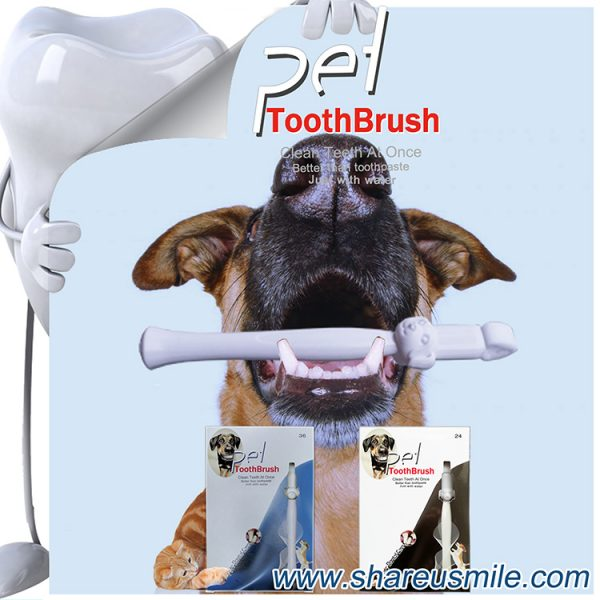 Best dog toothbrush Wholesale new dog toothbrush stick Pet Products Chinese Factory Direct & Fast Shipping