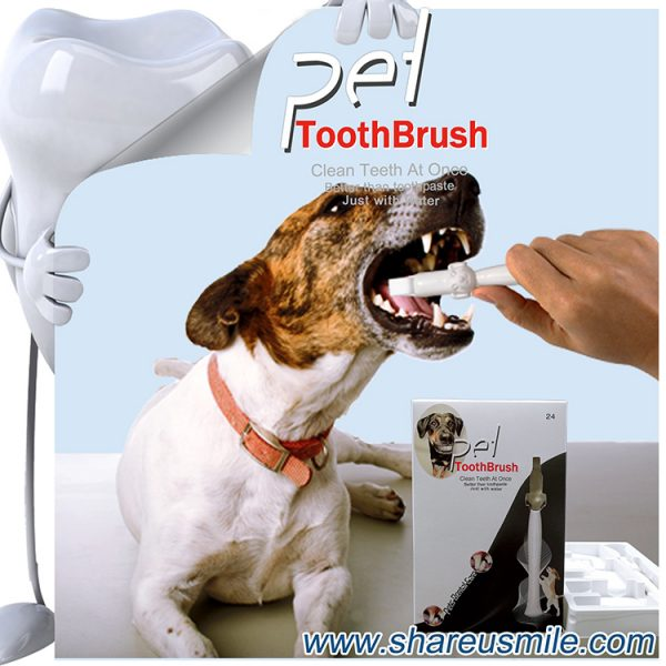 Best dog toothbrush Wholesale shareusmile pet teeth cleaning kit new dog toothbrush stick Pet Products Chinese Factory Direct & Fast Shipping
