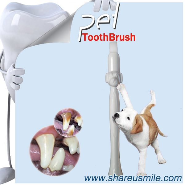 Wholesale Shareusmile New pet toothbrush dog teeth cleaning kit in minutes