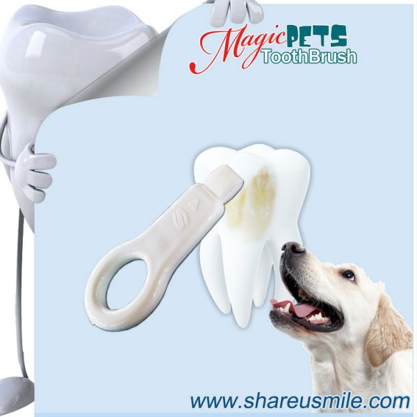 shareusmile SH-PET01-Pet tooth brush- Dog Pet Tooth Tartar Remover