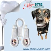 BEST-CAT-&-DOG-TOOTHBRUSH–New-Patent-Products-Best-Sellers-Dog-Toothbrushes-