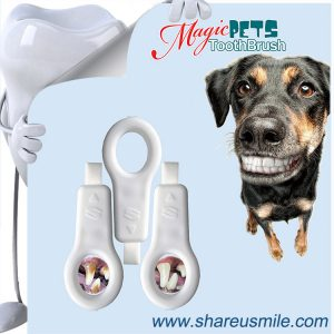 BEST-CAT-and-DOG-TOOTHBRUSH--New-Patent-Products-Best-Sellers-Dog-Toothbrushes-