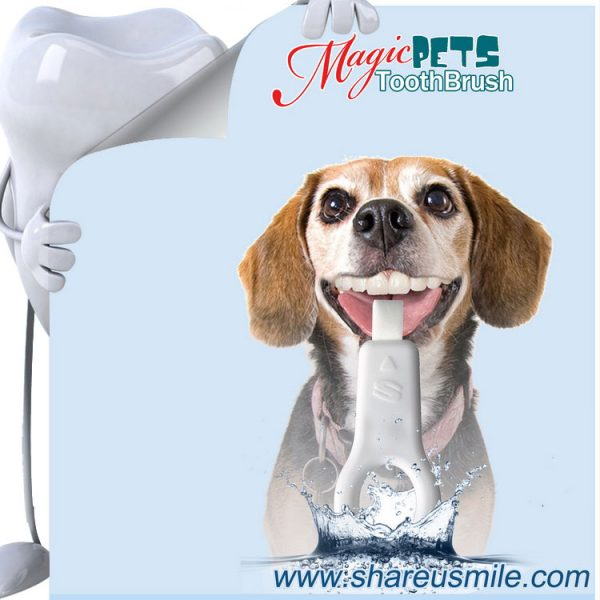 shareusmile SH-PET106-Pet tooth brush-Dog Tartar Removal Best Dog Teeth Cleaning Products