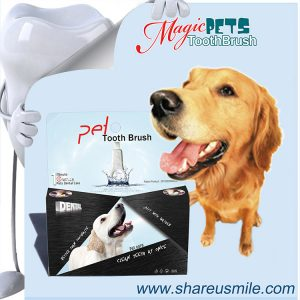 Dog-Dental-Care,-Pet-Teeth-Cleaning-Products--PTB003E