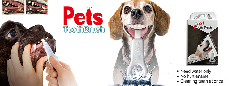 Share nano dog pet toothbrush