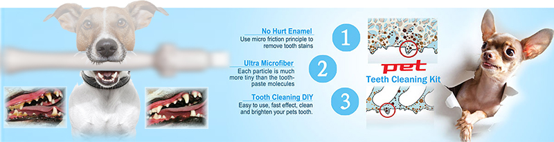 shareusmile pet teeth cleaning kit new dog dental care product New Ways of Cleaning a Dog's Teeth