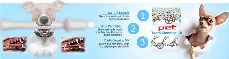shareusmile pet teeth cleaning kit new dog dental care product