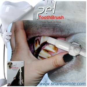 High Demand Products shareusmile pet toothbrush dog teeth cleaning stick