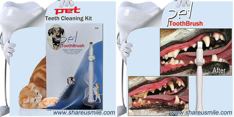 shareusmile-pet-toothbrush--Arrival-at-home-deep-teeth-cleaning