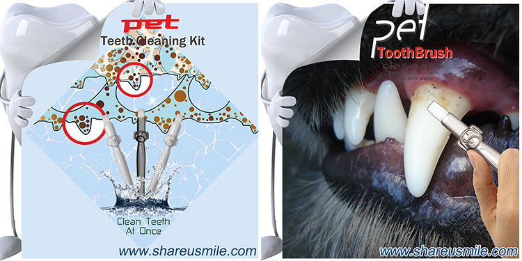 shareusmile-pet-toothbrush-kit-is-new-dental-solutions-for-dogs