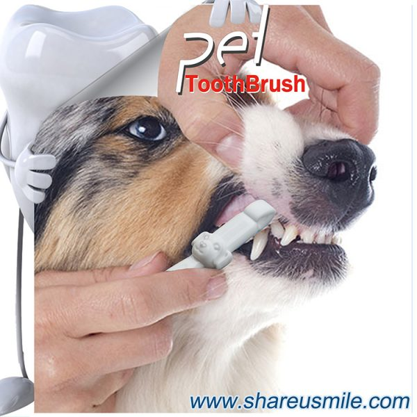 ShareUsmile most effective dog toothbrush and dog teeth cleaning kit