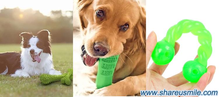 Silicon Pet Toothbrush Bone Dog chew toy bones Dog chew sticksDog Chew Toys