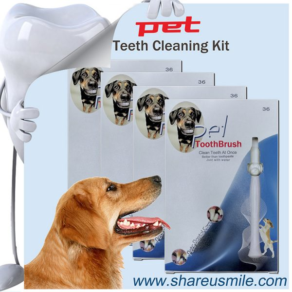 pet safe toothbrush Dog Tooth Cleaning Dog Dental Stick