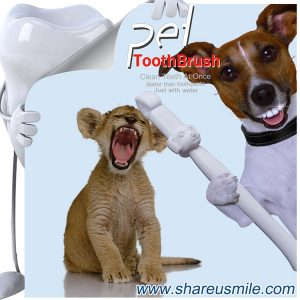 Best dog toothbrush Wholesale shareusmile pet teeth cleaning kit Pet Products Chinese Manufacturer