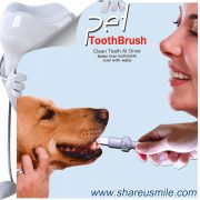 Best dog toothbrush Wholesale shareusmile pet teeth cleaning kit new dog toothbrush stick Pet Products Chinese Factory Fast Shipping‎