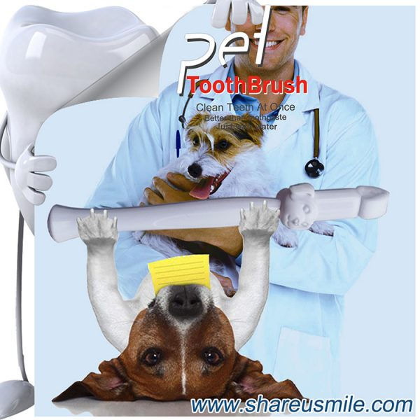 Best dog toothbrush Wholesale shareusmile pet teeth cleaning kit new dog toothbrush stick Pet Products Chinese Manufacturer (2)