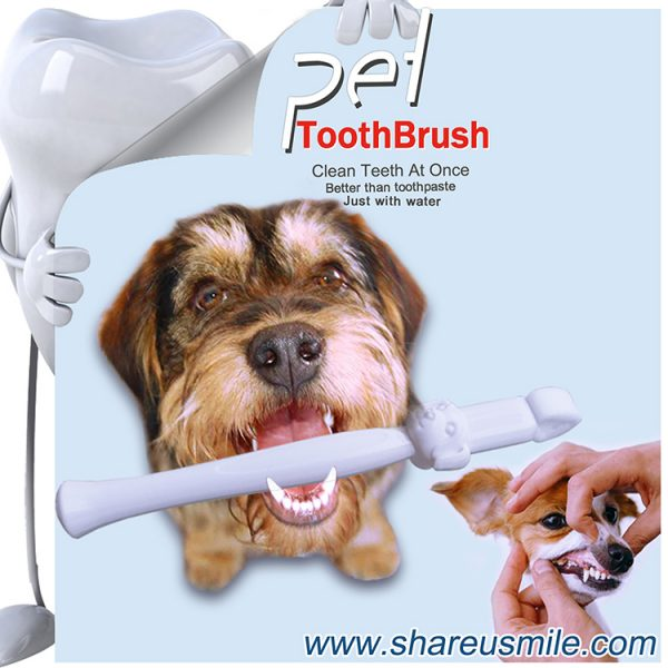 Best dog toothbrush Wholesale shareusmile pet teeth cleaning kit new dog toothbrush stick Pet Products Chinese Manufacturer Fast Shipping‎