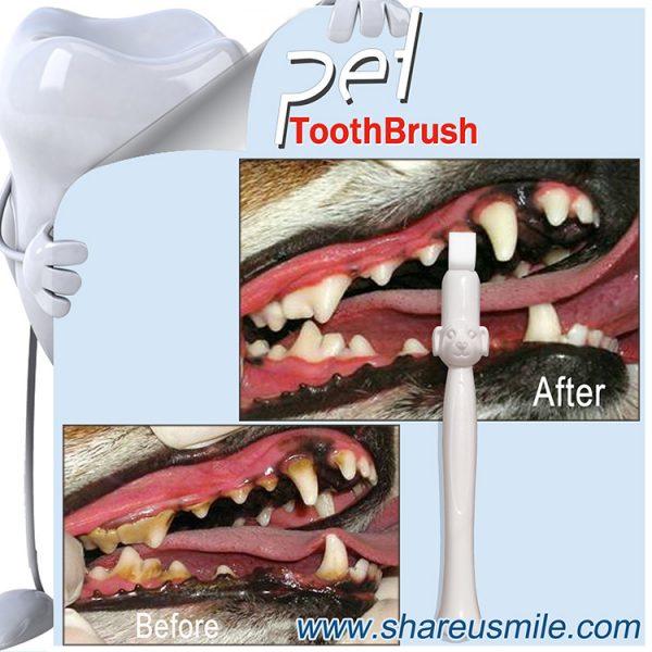 Wholesale Shareusmile New pet toothbrush effective dog teeth cleaning kit